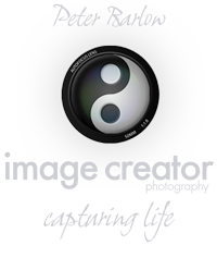 Image Creator Photography